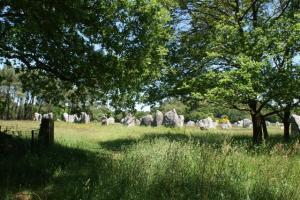 Groups of Menhirs