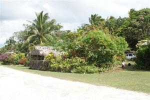 House and garden Niue style