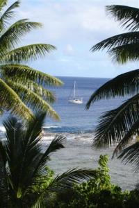 On the Niue buoys