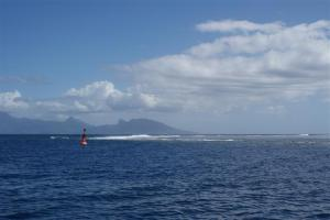 Tahiti reef