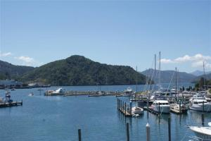 Camomile in the centre of the picture in Picton marina