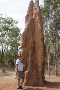 Bill next to a termite mound
