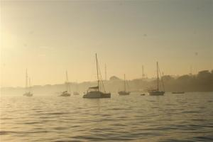 Rally yachts in the early morning mist