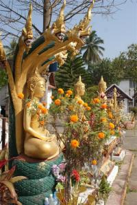 Beautiful Buddha in the grounds