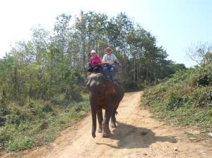 My reward - an elephant ride