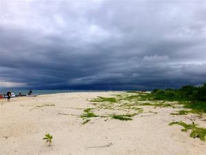 Storm brewing.