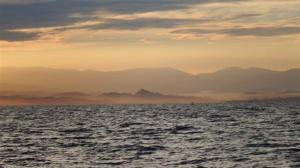 The Sulawesi coastline