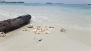 The beautiful beach at Tanjung Kelayang
