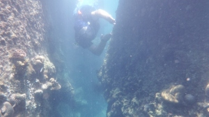 Bill free diving around the rocks