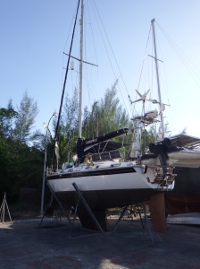 Camomile after her final lift a few weeks ago ready for the Indian ocean