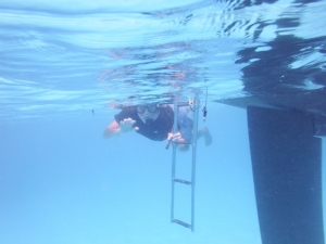 Bill snorkeling