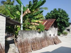 A local house