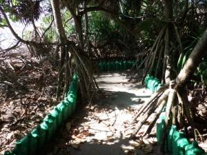 Manmade path