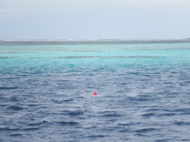 The little red buoy with the fateful reef behind it