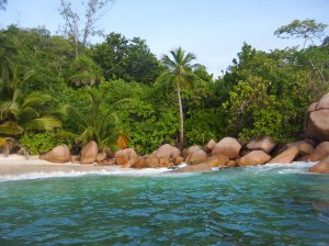 Pink granite boulders - guess why I like them!