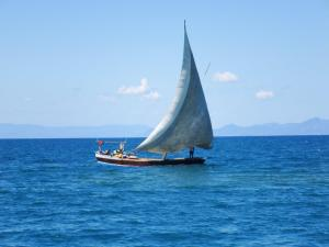 A sailing dhow