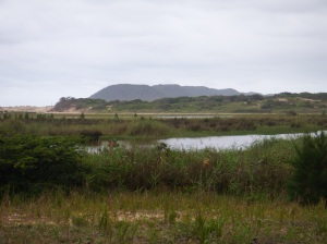 The southern end of the iSimangaliso wetland park