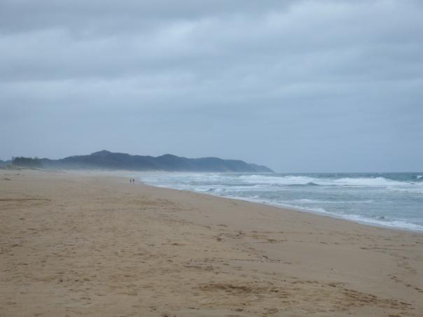 The wild Indian ocean