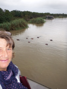Standing on the top deck with hippos all around us.