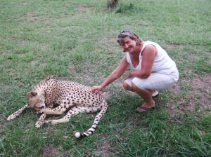 I got to stroke the cheetah